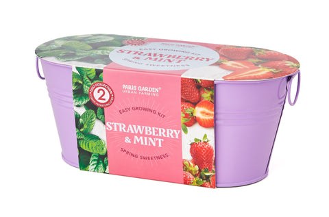 Mini Windowsill Oval Duo Spring Sweetness - Strawberry & Mint - Zigzagme