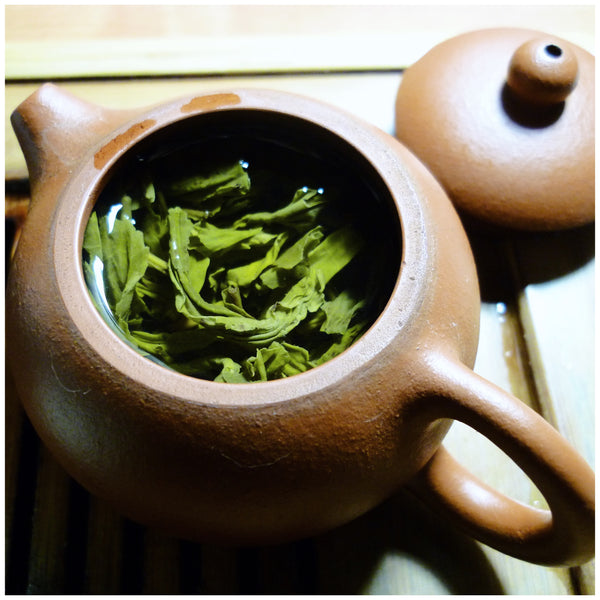 Sencha Green Tea: What It Is, and Where to Find the Best