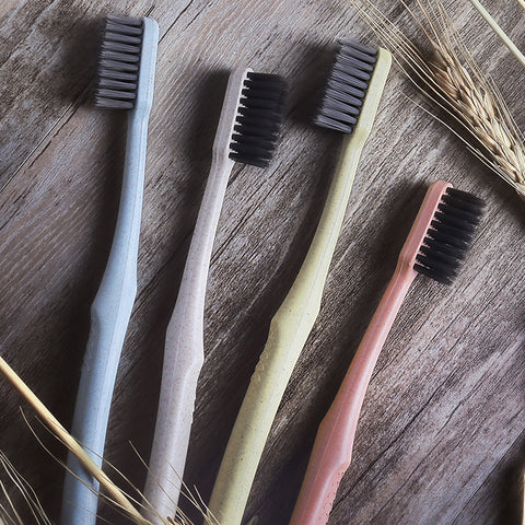 Eco Toothbrush Set Toothpaste Case Hygiene Bathroom Teeth Health Clean Environmentally Friendly Charcoal Trendy Design Wheat Vegan