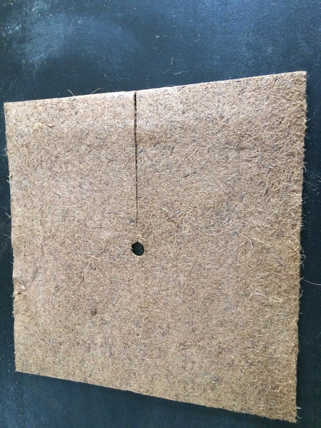 Neu-Coir Square Tree Ring