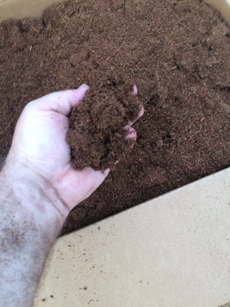 Box of Coco Coir Peat 1.5 cubic feet    17 lbs