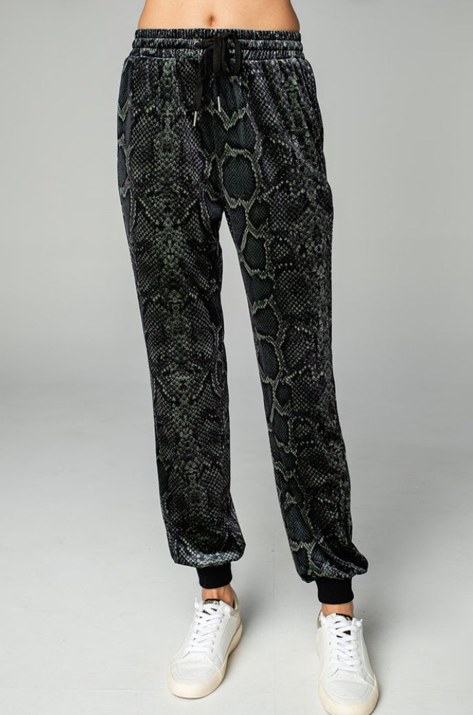Velour Meadow Track Snakeskin Joggers