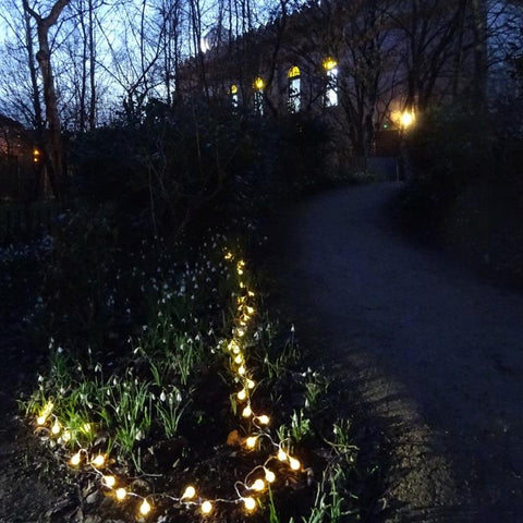 The Hidden Gardens Faery Trail, Glasgow