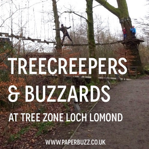 Tree Zone Loch Lomond