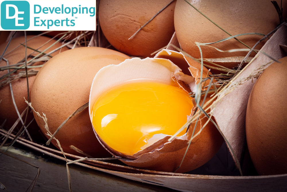 DevExp: Learn about chickens and eggs