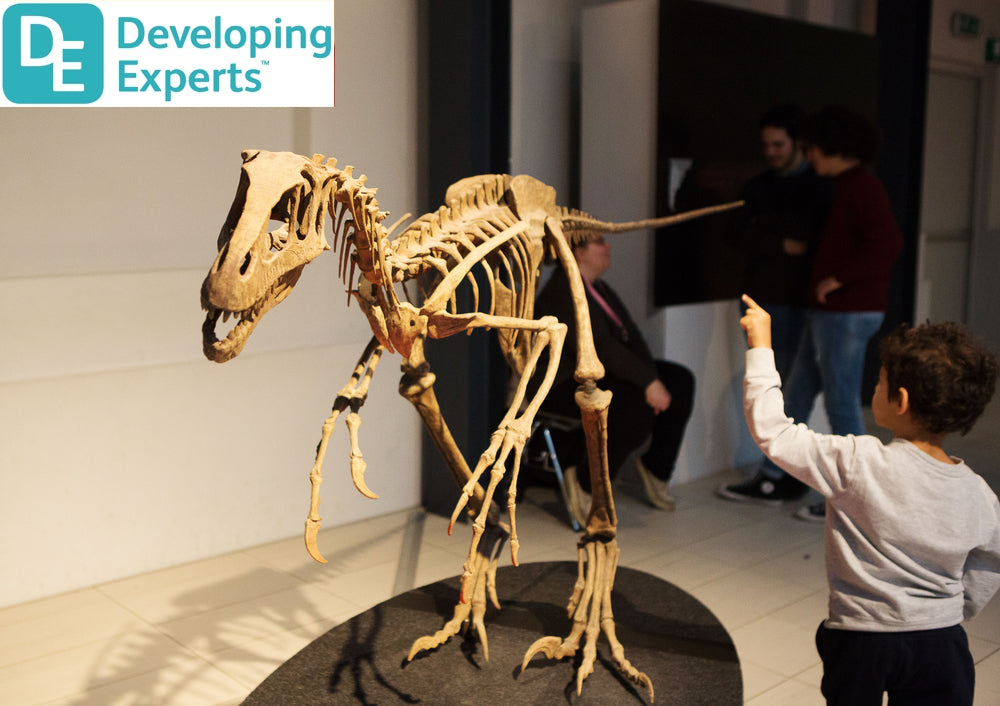DevExp: Know about dinosaurs that roamed the Earth