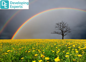 DevExp: Learn about rainbows in the sky