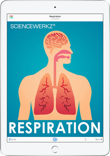ScienceWerkz® Respiration
