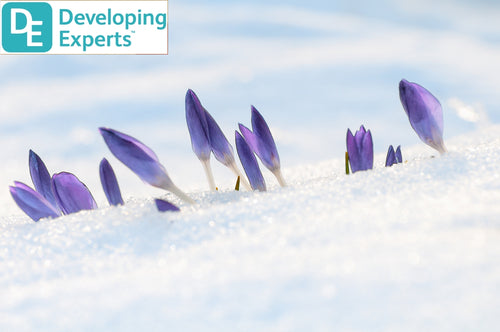 DevExp: Know about snow and melting