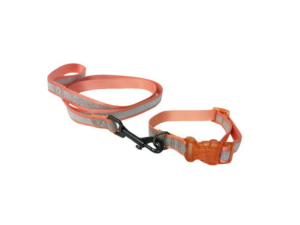Fitzgerald - Collar & Leash Set
