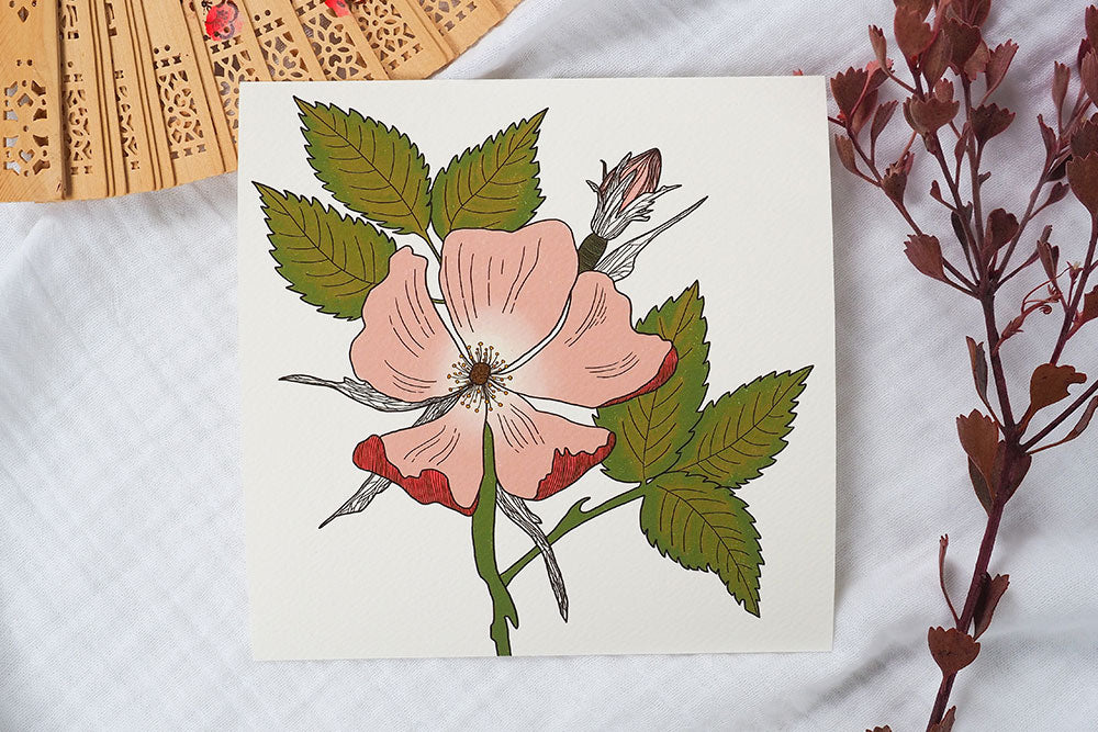 Wild Dog Rose Art Print