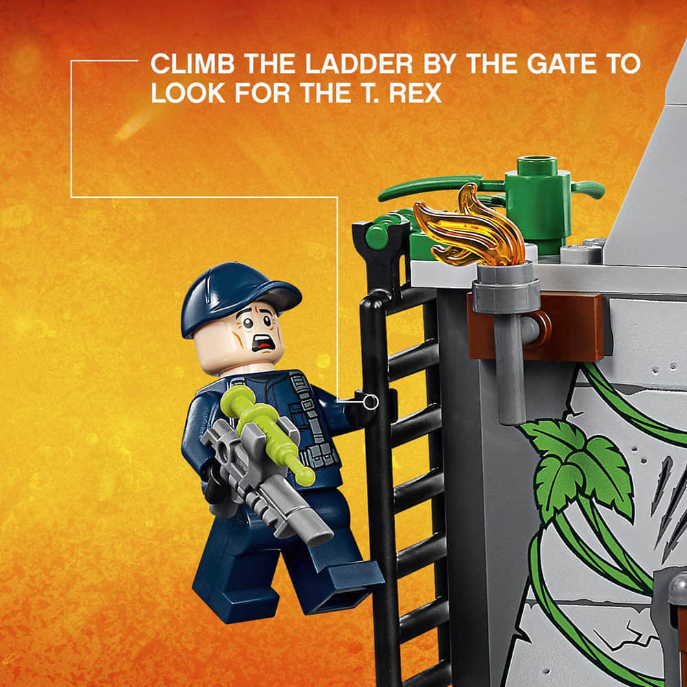 Climb the Ladder By the Gate