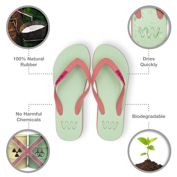 Light Green and Light Maroon Twofold Flip Flops, Women's