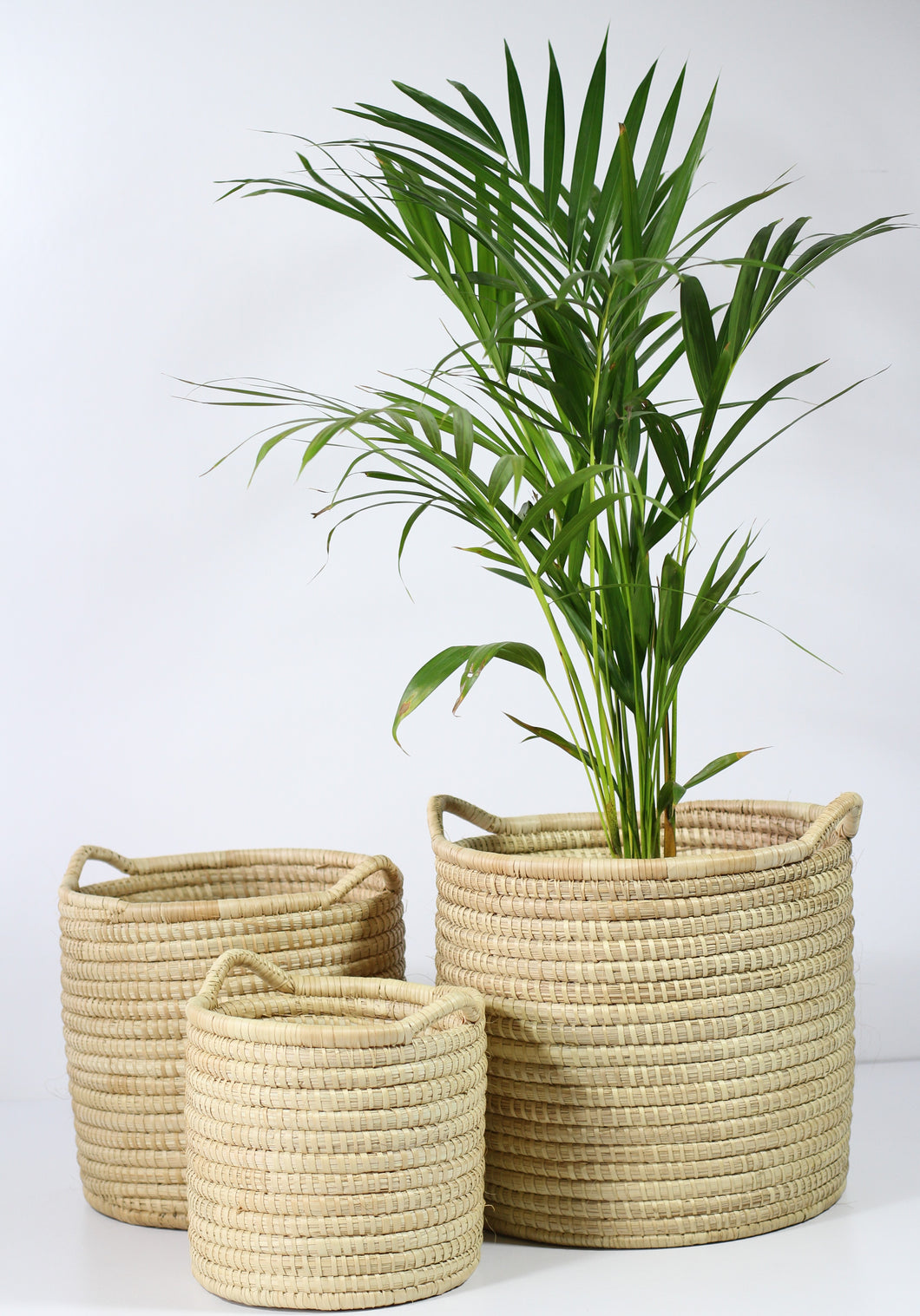 Basotho Baskets  [bah-soo-too] - Co-Lab SA