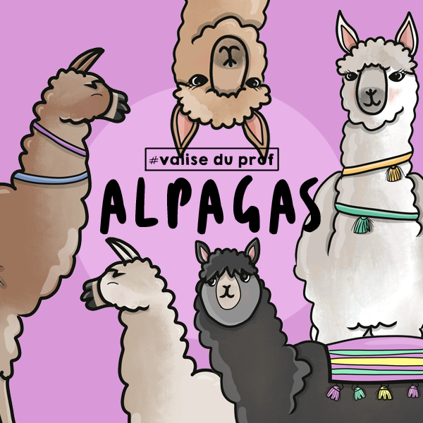 6 Cliparts - Alpagas