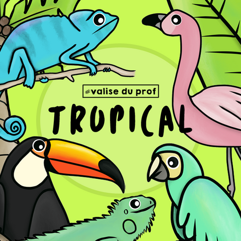 10 Cliparts - Tropical