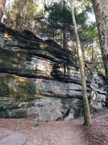 Rock ledges
