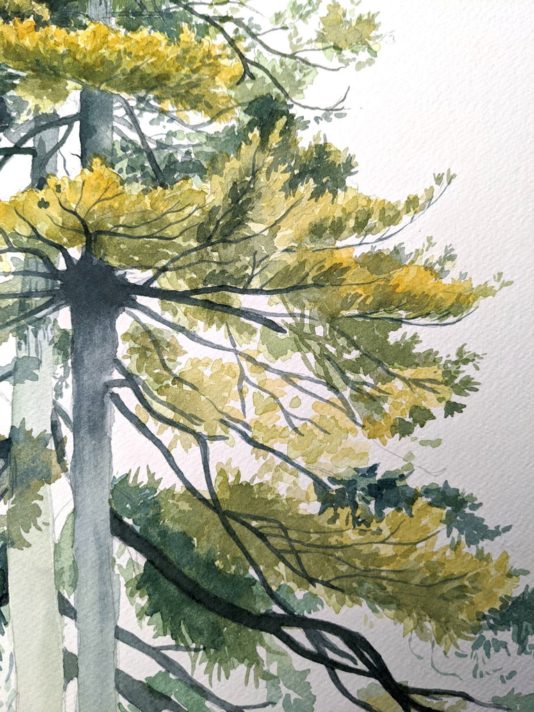 close up if the tree painting