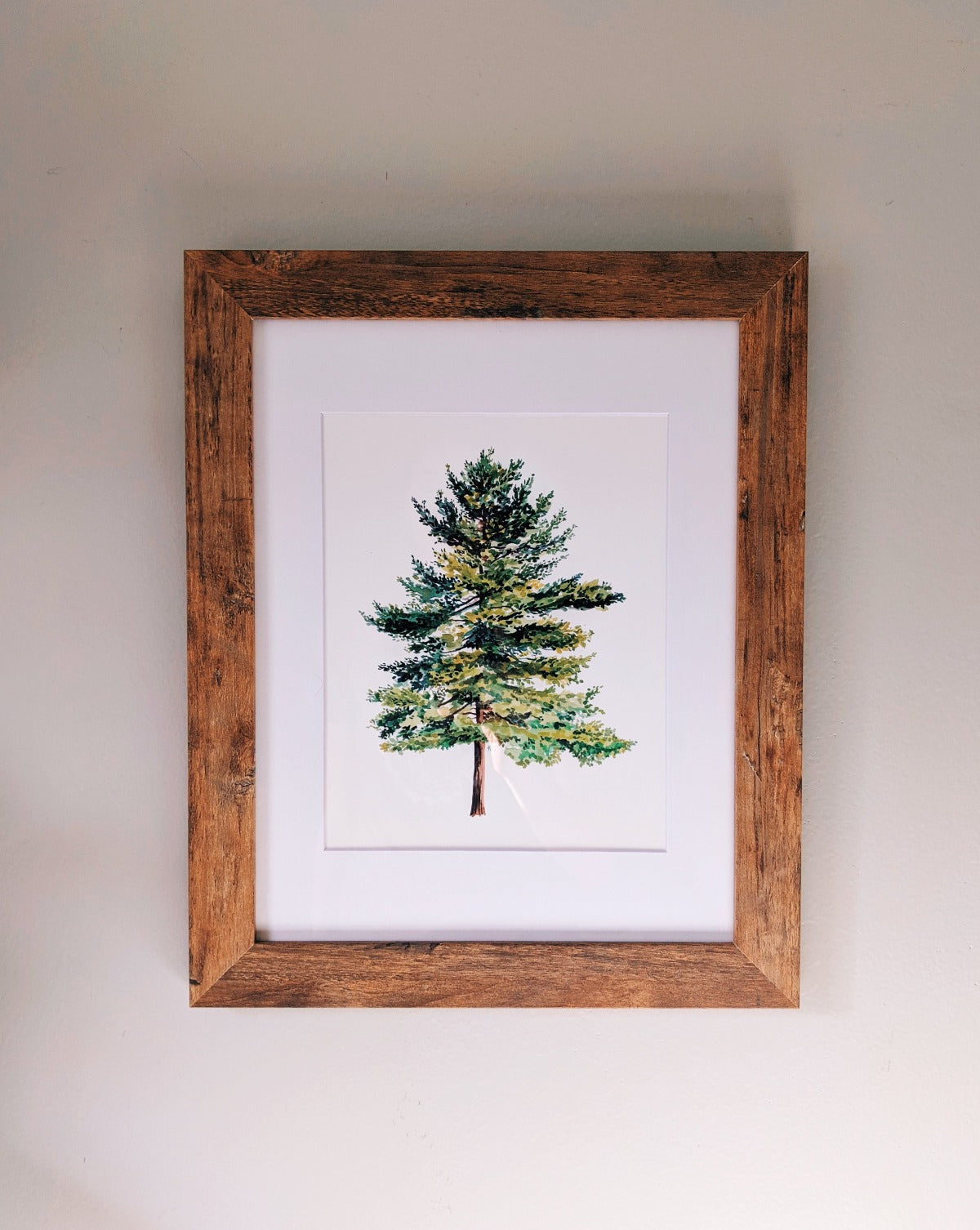Spruce Tree - Framed - Kim Everhard Art