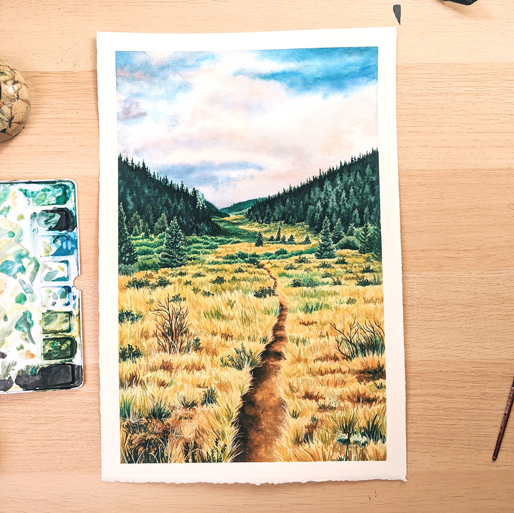 The Colorado Trail - Original Painting - 11x14""