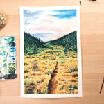 "The Colorado Trail - Original Painting - 11x14"" - Everhard Designs Nature Art"