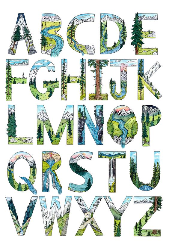 Nature Alphabet Poster 13 x 19 - Kim Everhard Art