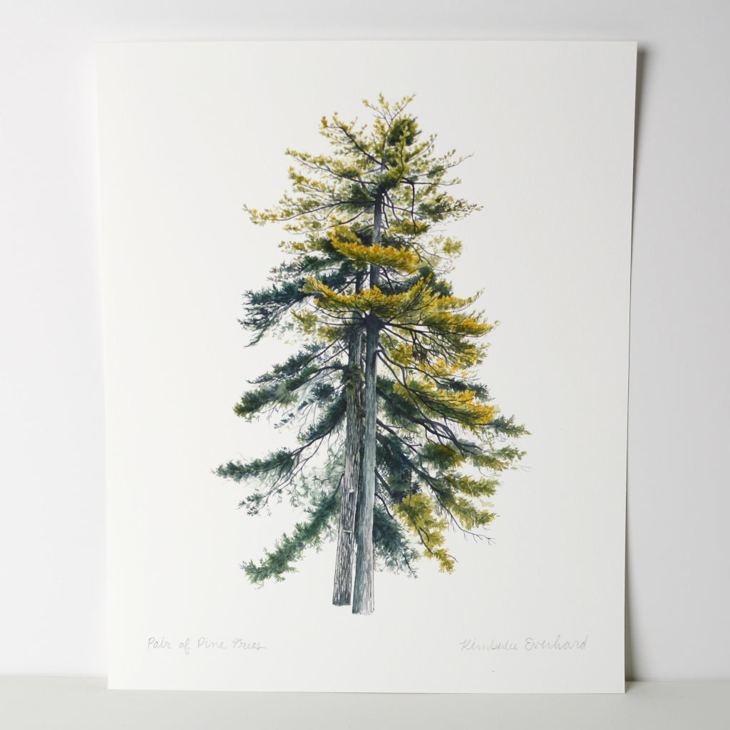 A Pair of Pine Trees - Fine Art Print - Everhard Designs Nature Art