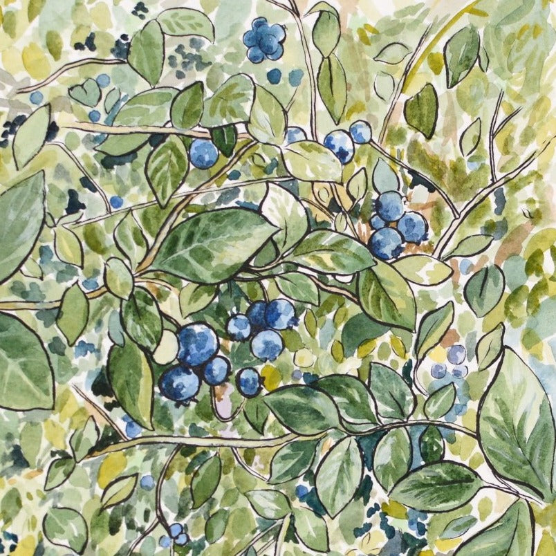 "Blueberries - Original Painting - 8x10"" - Everhard Designs Nature Art"