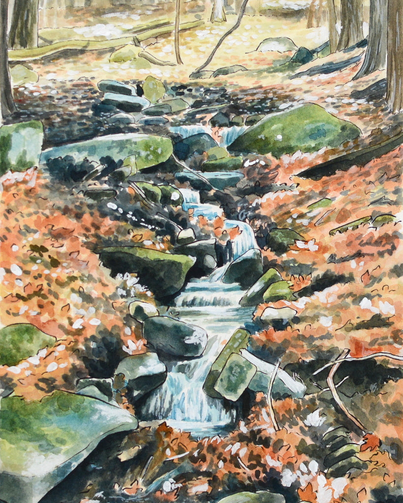 "Stream in the Woods - Original Painting - 8.5x14"" - Everhard Designs Nature Art"