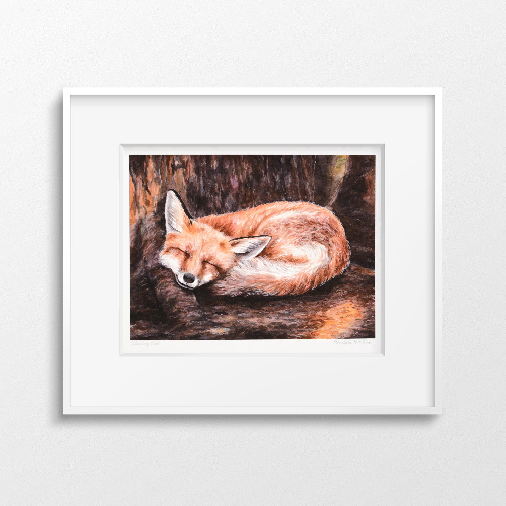 Sleeping Fox - Art Print 8 x 10 - Everhard Designs Nature Art