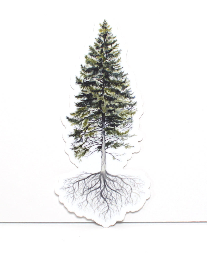 Pine Tree -  Vinyl Sticker - Everhard Designs Nature Art