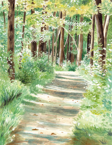 Summer Trails - Original Watercolor Painting - Everhard Designs Nature Art
