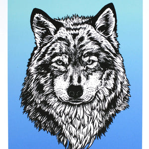 Blue wolf - Art Print 8 x 10 - Kim Everhard Art