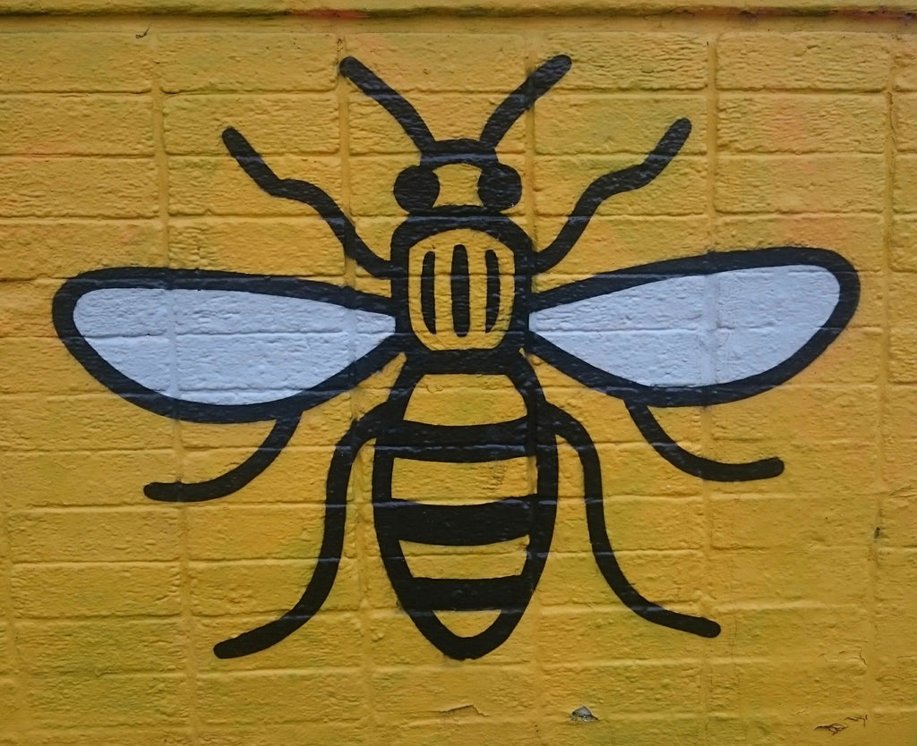 Bellfield Clothing - Friends of the Earth - Manchester Bee