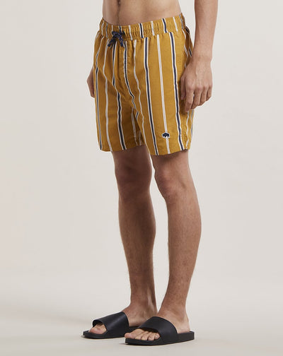 BELLFIELD PRETO STRIPED MENS SWIM SHORTS | TOBACCO