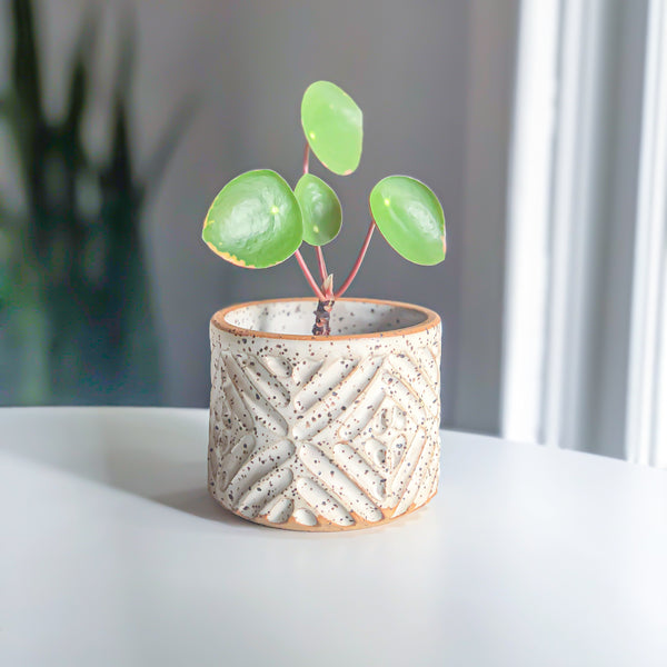 Small Planter // Hand-carved