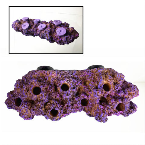 Reefing Art Magnetic Real Reef Frag Rack N52 Magnets (Coralline Purple)