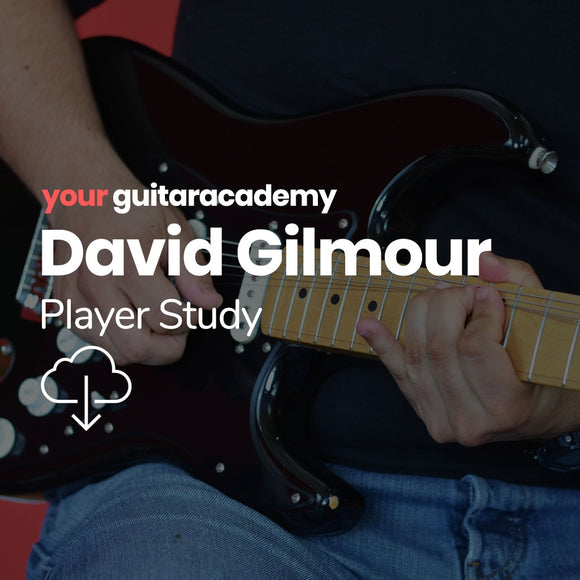 David Gilmour Player Study