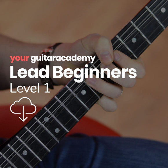 Lead Beginners (Level 1)
