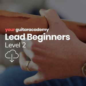 Lead Beginners (Level 2)