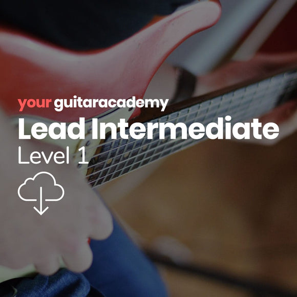 Lead Intermediates (Level 1)