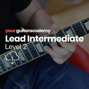 Lead Intermediates