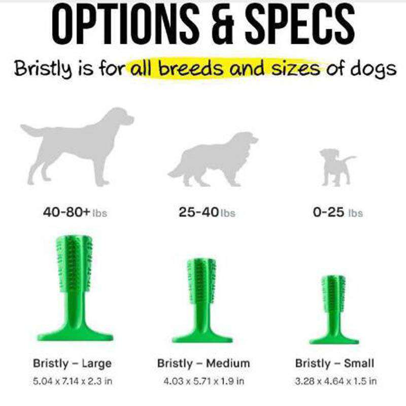 World's Best And Most Effective Dog Toothbrush - Prography Gear