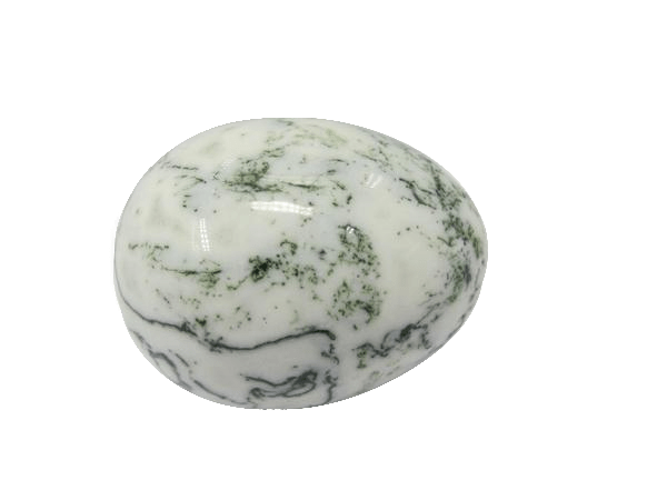 Natural Polished Moss Agate Egg