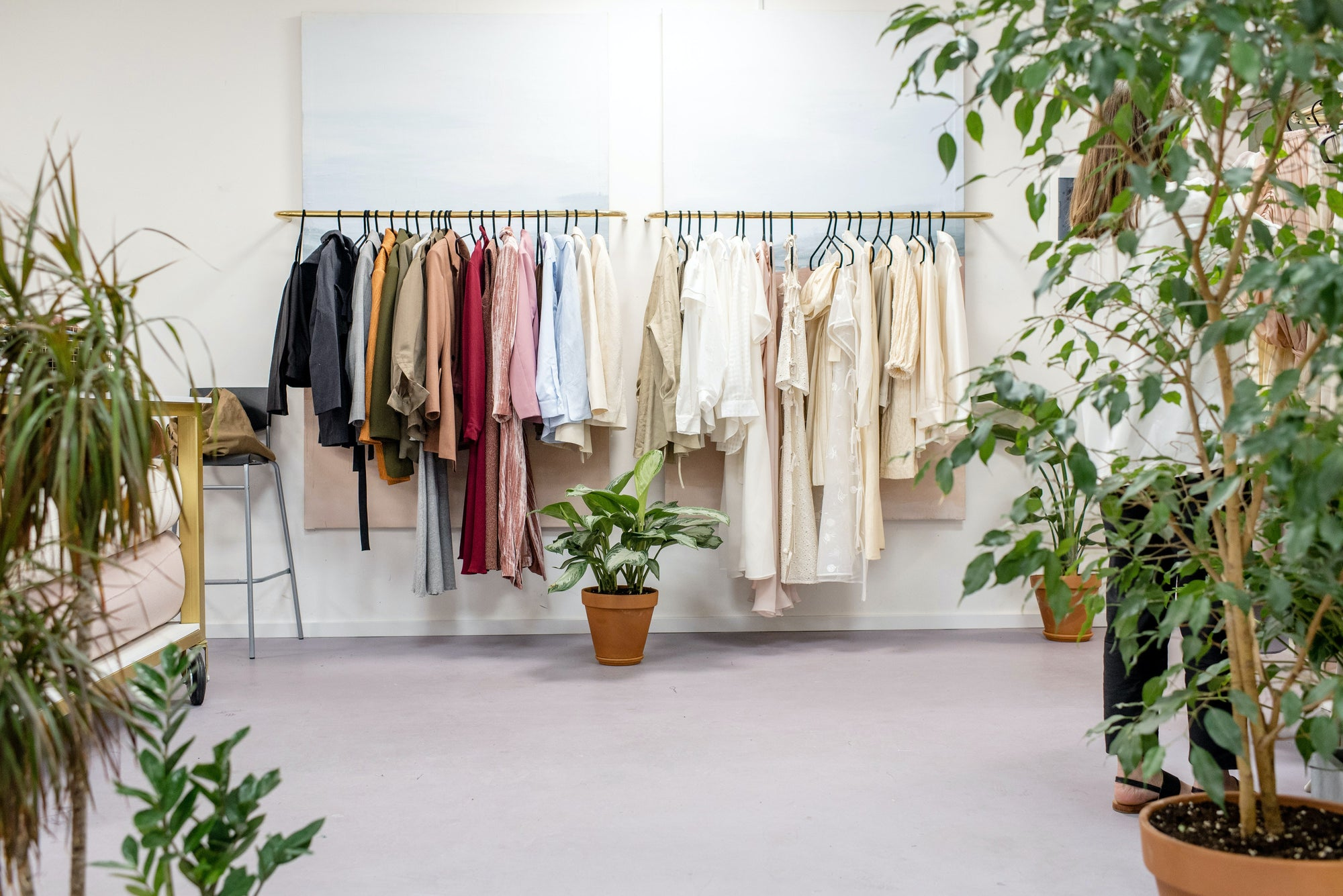 Indoor plants in an open room with one clothes rack