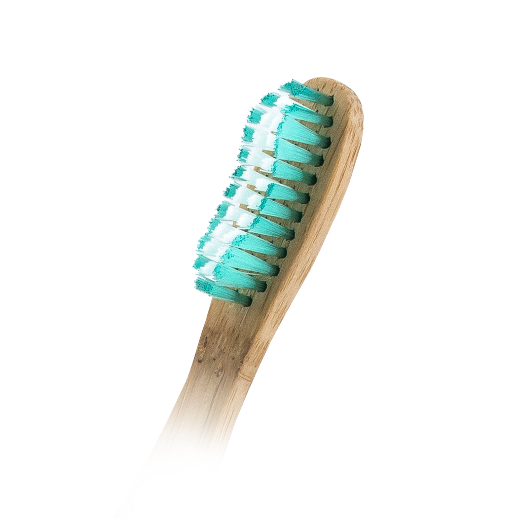 Gleam Bamboo Brush GBB-003