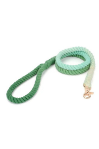 Hand Dyed Cotton Rope Leash, Dark Green Ombre 1