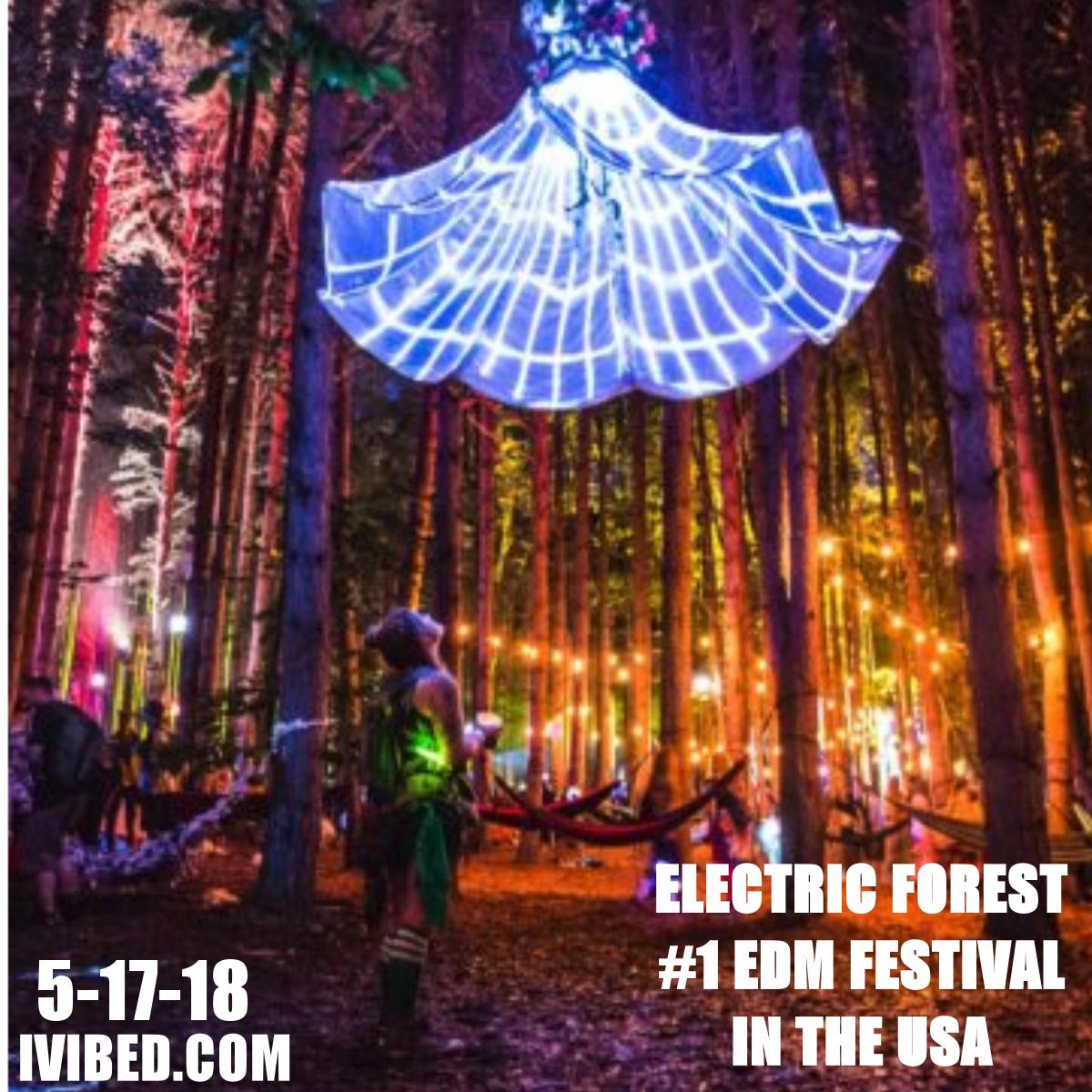 ELECTRIC FOREST IS THE BEST EDM FESTIVAL IN THE WORLD