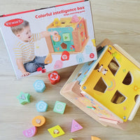 Shape Sorting Box Set