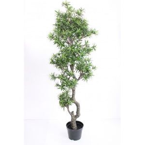 Pine Tree | Artificial Plants